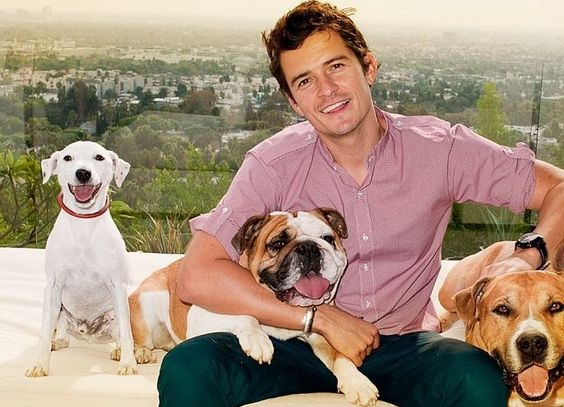 Orlando Bloom with Dogs