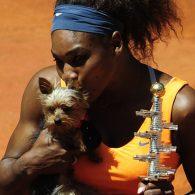 Serena Williams' pet Chip Williams