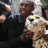 Usain Bolt's pet Lightning Bolt