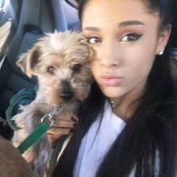 Ariana Grande's pet Strauss
