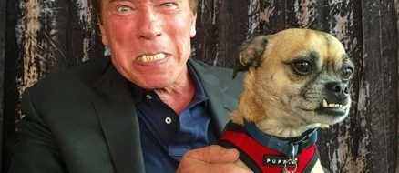 Arnold Schwarzenegger Pets