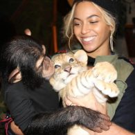 Beyonce and Monkey and a Tiger