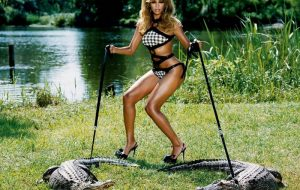 Beyonce and a some Gators