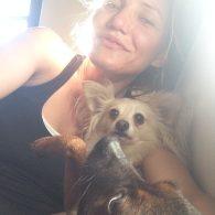 Cameron Diaz's pet Long-hair Chihuahua (Diaz)