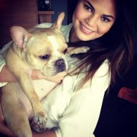 Chrissy Teigen's pet Pippa