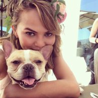 Chrissy Teigen's pet Puddy