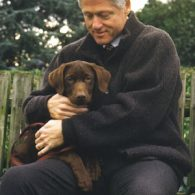 Bill Clinton's pet Buddy