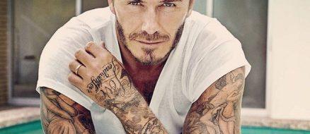 David Beckham Pets