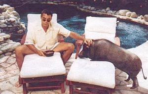 George Clooney Hanging with Max the Pig