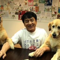 Jackie Chan and his 2 retrievers