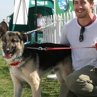 Jake Gyllenhaal's pet Atticus