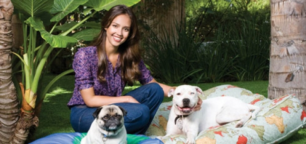 Jessica Alba and her Dogs