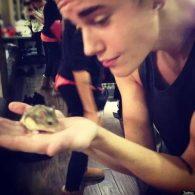 Justin Bieber's pet Pac
