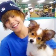 Justin Bieber's pet Sammy