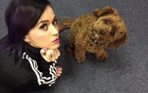 Katy and Butters