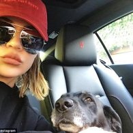 Khloe Kardashian's pet Gabbana
