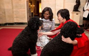 Lady Michelle Obama and First Lady Akie Abe with Bo