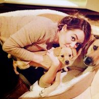 Lauren Conrad and her dogs