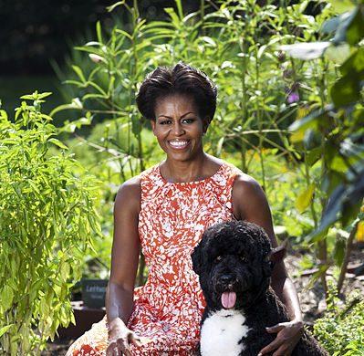 Michelle Obama Pets - Celebrity Pet Worth