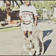 Mike Tyson walks his tiger