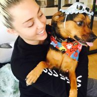 Miley Cyrus' pet Happy