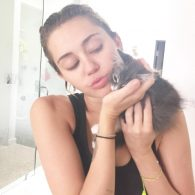 Miley Cyrus' pet LiLo