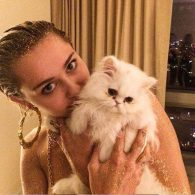 Miley Cyrus' pet Shanti Om Bb