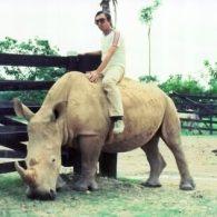 Pablo Escobar rides a Rhino