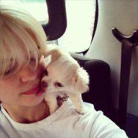 Pixie Geldof's pet Buster Sniff