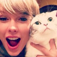 Taylor Swift's pet Meredith Grey