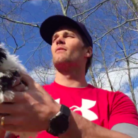 Tom Brady's pet Fluffy