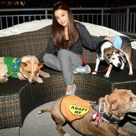 Ariana Grande - Pets