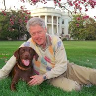 Bill Clinton's pet Seamus