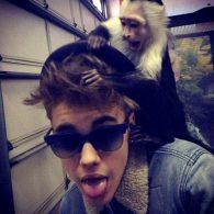 Justin Bieber's pet OG Mally