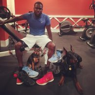 Kevin Hart Riggs and Roxy -dogs