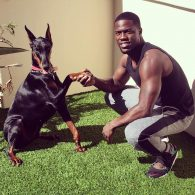 Kevin Hart's pet Roxy