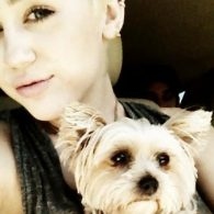 Miley Cyrus' pet Lila