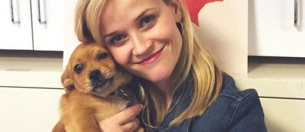 Reese Witherspoon Pets