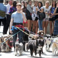 Daniel Radcliffe's pet Binka and Nugget