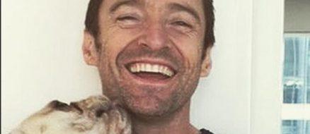 Hugh Jackman Pets