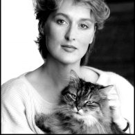 Meryl Streep's pet Cats (Meryl Streep)