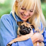 Anna Faris' pet Bonzo and another pug