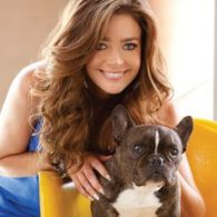 Denise Richards' pet Hank