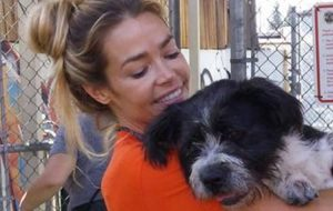 Denise Richards - Lily - dog