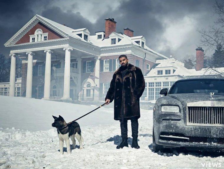 Drake - Akita - Diamond - Cash Money Records