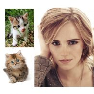 Emma Watson's pet Bubbles and Domino