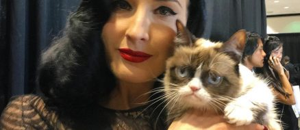 Grumpy Cat, 2012 Internet Sensation, Rumored to Have a $100 Million Dollar Net Worth