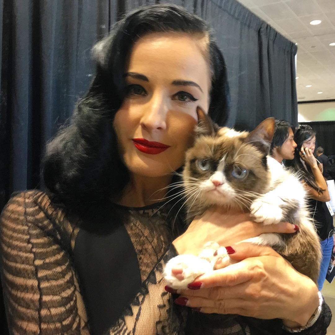 Grumpy Cat, 2012 Internet Sensation, Rumored To Have A ...
