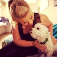Kelly Clarkson's pet Security