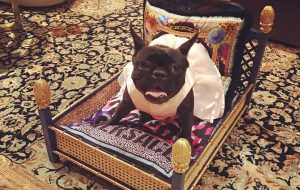 Lady Gaga - Miss Asia Kinney - Versace blanket and pillow